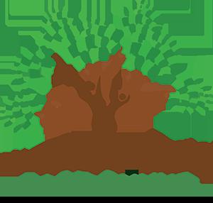 R.I.S.E. ONLINE